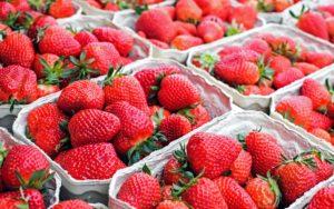 strawberries-1350482