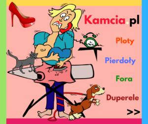 Sprawdź na Kamcia.pl
